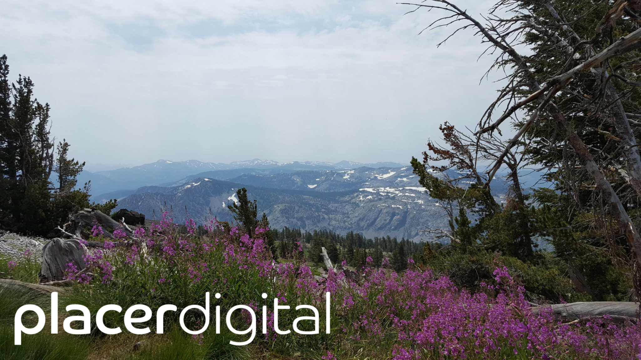placer digital trail directory