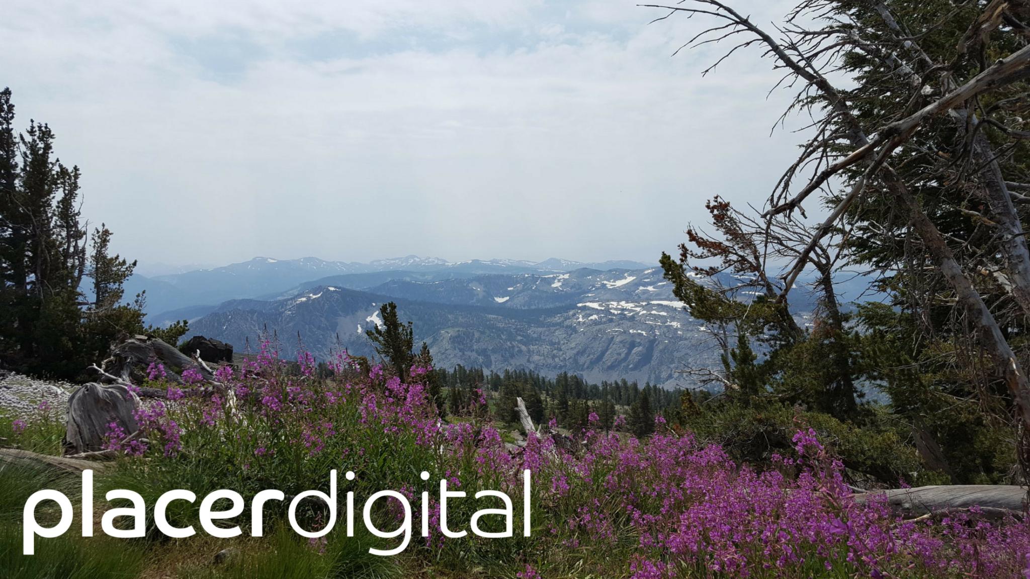placer digital web design in auburn and roseville